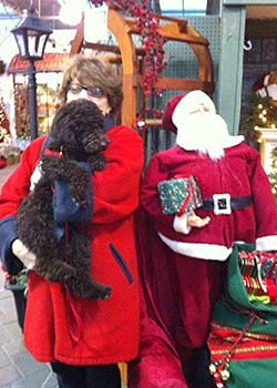 Alexander The Great  visiting with Santa In The Big Apple (NYC)